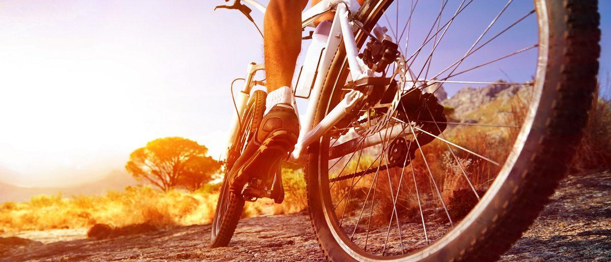 Ссылка на: Как выбрать и какой купить велосипед мужчине?