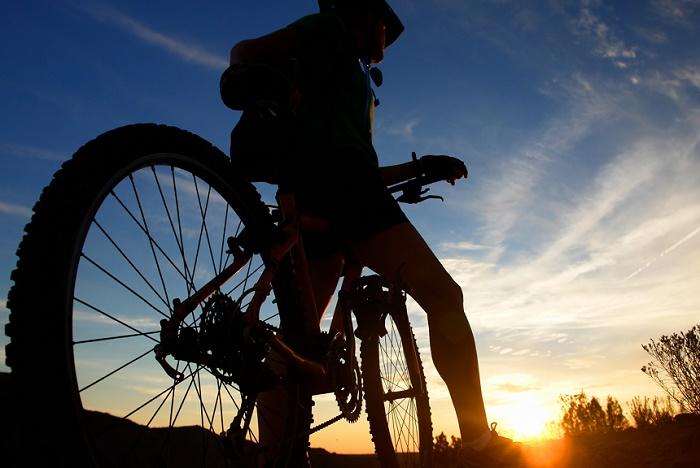 какой велосипед купить взрослому