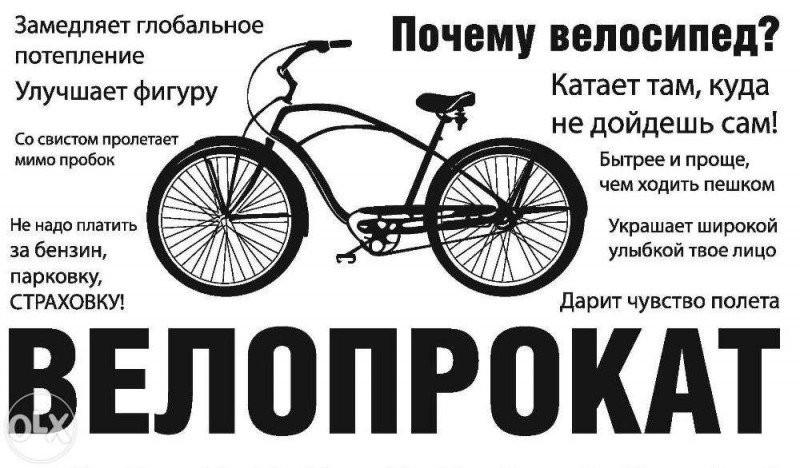 велопрокат во владимире